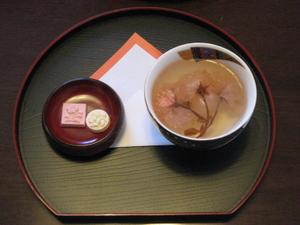 Sakura_teaweb_2